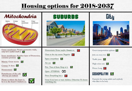 cty: Housing options for 2018-2037  Mitoclondria  SUBURBS  Gitu  Matrix CristaeInner  Outer  membrane membrane  Outer membrane: Proper protective walls,  Great transportation options  Jobs on every tree V  Traffic jams  High crime rate  Prices: Long  Homeostasis: Home maybe. Ostasis no.  only let's useful stuffF in  Close to the cty centre Negative  Inner membrane: Another layer of Protection,  contains proteins V  Space: everywhere  Matrix: Great movie  v  Cristae: It does.  Homeostasis  Powerhouse of the cell.  Oh boy yes indeed.  Home is where the heart is  Air: yes  Pets : Tons of them. Keep at it.  Quiet: ETERNAL OO  Price: Everything has a  GOSHOPOLITAN  Great if you have or want children. Otherwise I'd chooseFatti for young adults and anybody  Fantastic for young adults and anybod  who likes to be busy  Is it in the heart? I believe so.  something else