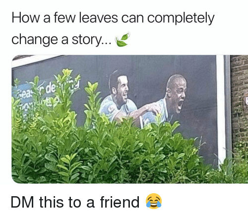 Memes, Change, and 🤖: How a few leaves can completely  change a story...  de  eas DM this to a friend 😂