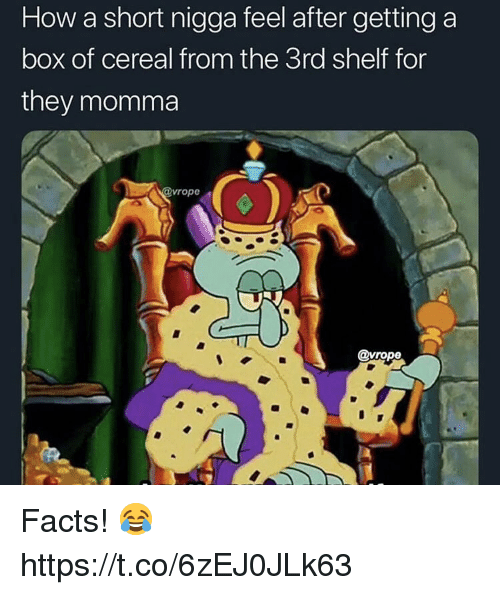 Facts, How, and Box: How a short nigga feel after getting a  box of cereal from the 3rd shelf for  they momma  vrope  @vrope Facts! 😂 https://t.co/6zEJ0JLk63