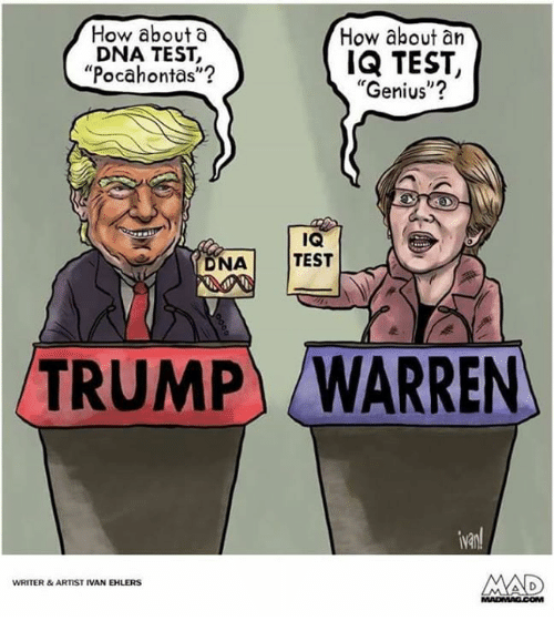 "Pocahontas: How about a  DNA TEST,  Pocahontas""?  How about an  IQ TEST,  ""Genius""?  ka  NA TEST  TRUMP  WARREN  van  WRITER&ARTIST IVAN EHLERS"