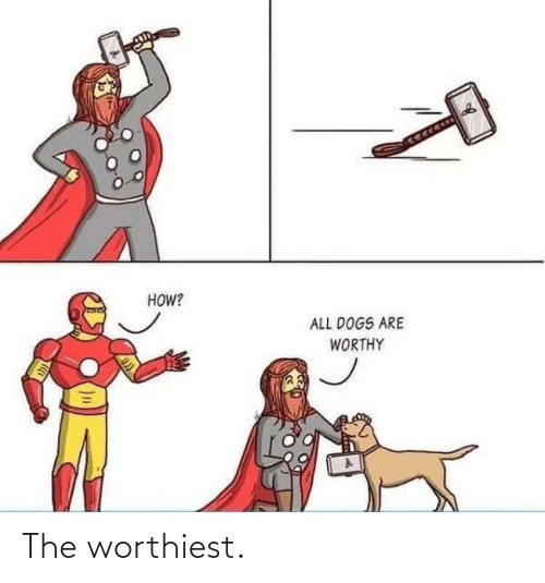 all dogs: HOW?  ALL DOGS ARE  WORTHY The worthiest.
