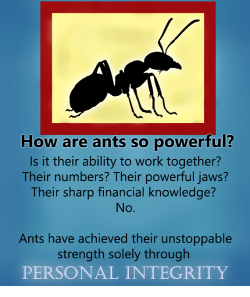 Dank, 🤖, and Jaws: How are ants so powerful?  Is it their ability to work together?  Their numbers? Their powerful jaws?  Their sharp financial knowledge?  Ants have achieved their unstoppable  strength solely through  PERSONAL INTEGRITY