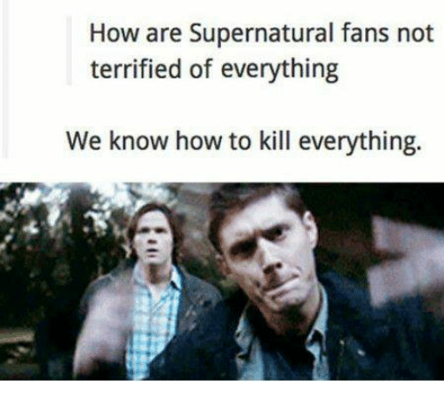 Memes, 🤖, and How to Kill: How are Supernatural fans not  terrified of everything  We know how to kill everything.