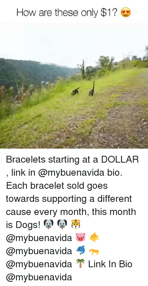 Soldes: How are these only $1? Bracelets starting at a DOLLAR , link in @mybuenavida bio. Each bracelet sold goes towards supporting a different cause every month, this month is Dogs! 🐶 🐶 🐯 @mybuenavida 🐷 🐠 @mybuenavida 🐬 🐆 @mybuenavida 🌴 Link In Bio @mybuenavida