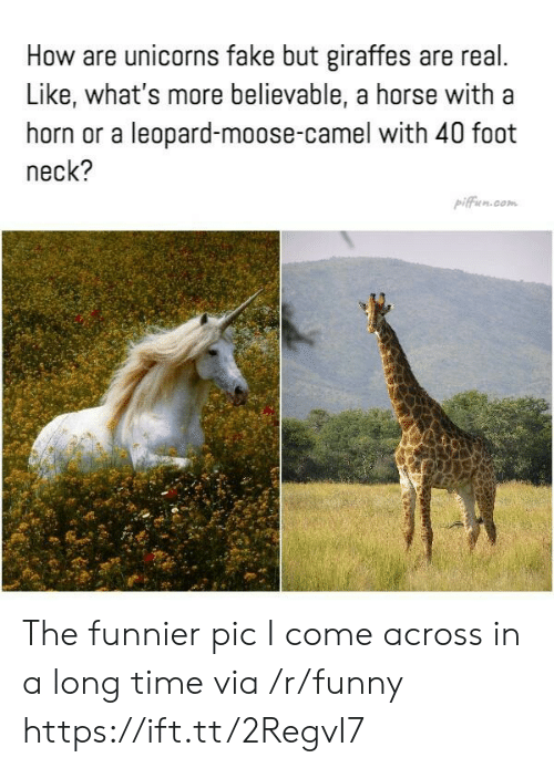 unicorns: How are unicorns fake but giraffes are real  Like, what's more believable, a horse with a  horn or a leopard-moose-camel with 40 foot  neck?  pifficn.com The funnier pic I come across in a long time via /r/funny https://ift.tt/2RegvI7