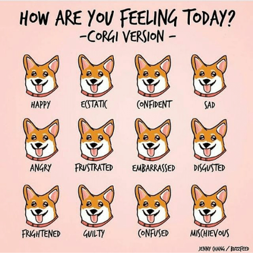 Memes, Buzzfeed, and Happy: HOW ARE YoU FEELING ToDAY?  -CoRAl VERSION  HAPPY  E(STATIC CNFIDENT  SAD  ANGRY FRUSTRATED EMBARRASSED DISAUSTED  田9  FRIGHTENED GUILTY  (ONFUSED MISCHIEVous  JENNY (HANG/ BUZZFEED