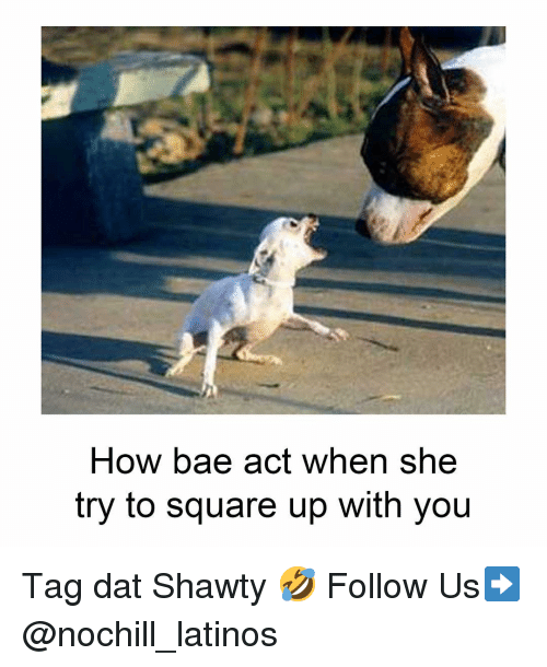 Square Up: How bae act when she  try to square up with you Tag dat Shawty 🤣 Follow Us➡️ @nochill_latinos