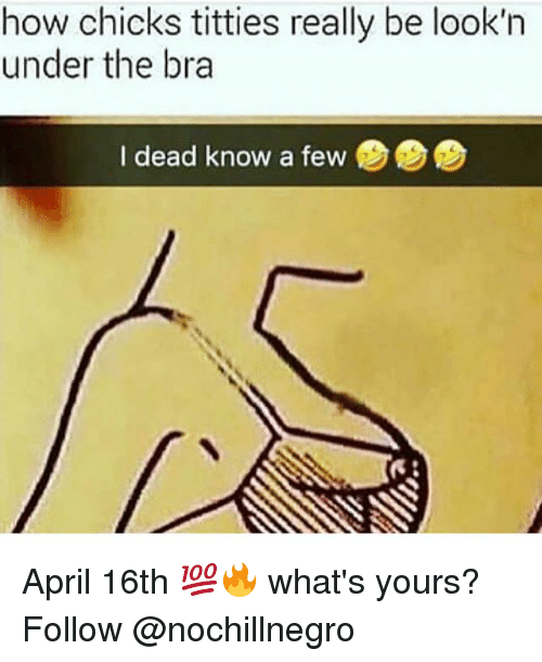 Memes, Titties, and April: how  chicks  titties  really  be  look'n  under the bra  I dead know a few April 16th 💯🔥 what's yours? Follow @nochillnegro