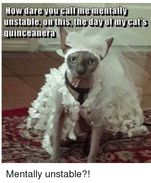 Quinceanera: How dare y  unstable, on this, the day of my cat's  quinceanera Mentally unstable?!