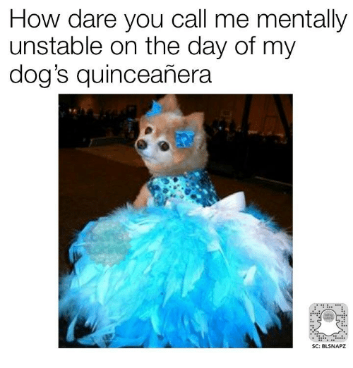 Quinceanera: How dare you call me mentally  unstable on the day of my  dog's quinceanera  SC: BLSNAPZ
