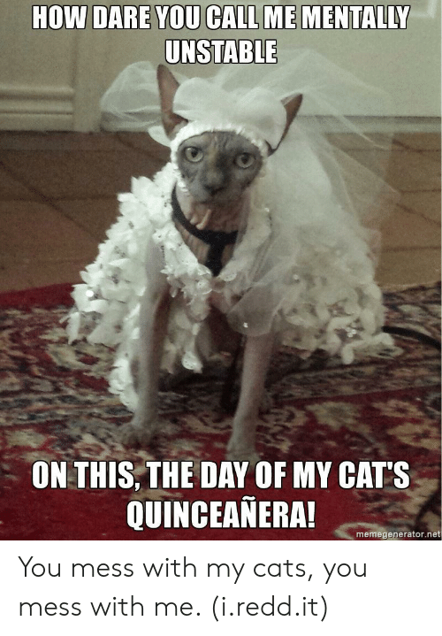 Quinceanera: HOW DARE YOU CALL ME MENTALLY  UNSTABLE  ON THIS,THE DAY OF MY CAT'S  QUINCEANERA  memegenerator.net You mess with my cats, you mess with me. (i.redd.it)