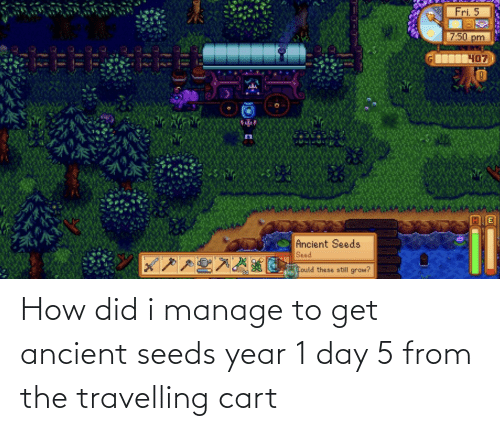 seeds: How did i manage to get ancient seeds year 1 day 5 from the travelling cart