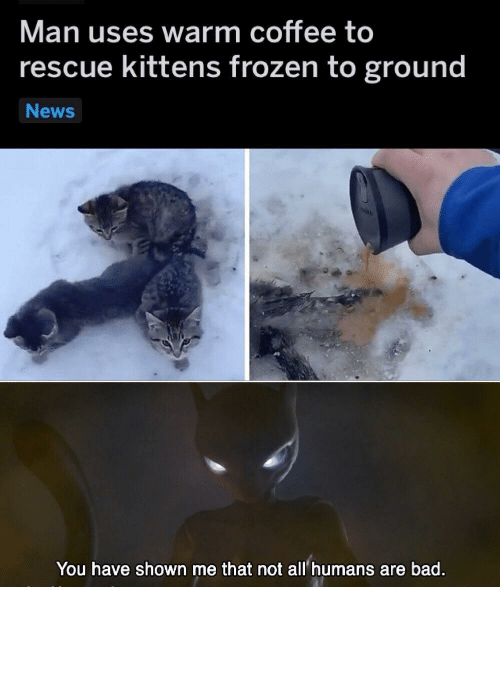 how did: How did they get frozen to the ground in the first place