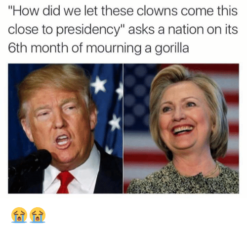 "Clowns, Presidents, and Dank Memes: ""How did we let these clowns come this  close to presidency"" asks a nation on its  6th month of mourning a gorilla 😭😭"