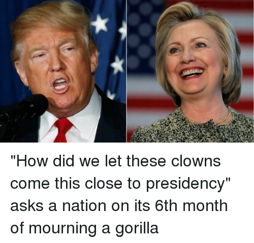 "Clowns, Presidents, and Girl Memes: ""How did we let these clowns come this close to presidency"" asks a nation on its 6th month of mourning a gorilla"
