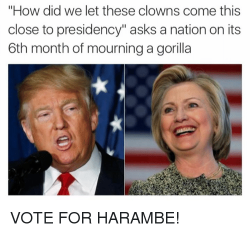 "Dank, Clowns, and Presidents: ""How did we let these clowns come this  close to presidency"" asks a nation on its  6th month of mourning a gorilla VOTE FOR HARAMBE!"