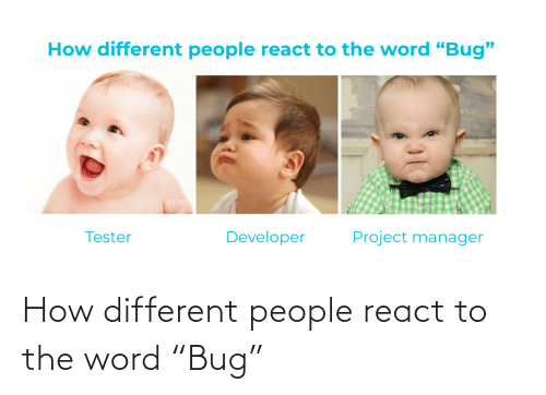 "React: How different people react to the word ""Bug"""