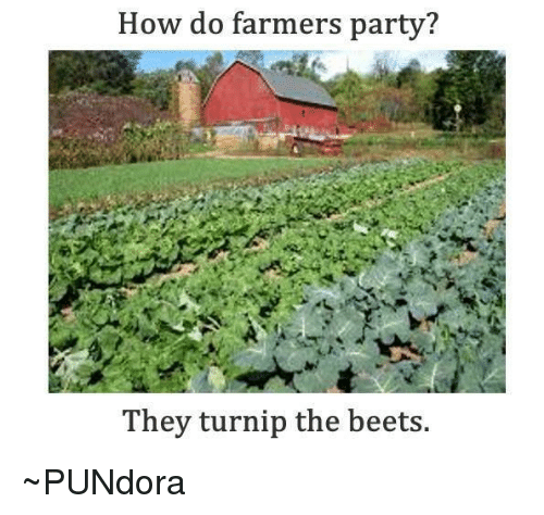 beet: How do farmers party?  They turnip the beets. ~PUNdora