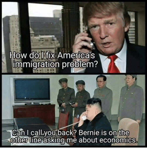 America, Immigration, and Anarchyball: How do I fix America's  immigration problem?  Can I call you back? Bernie is on the  other line asking me about economics