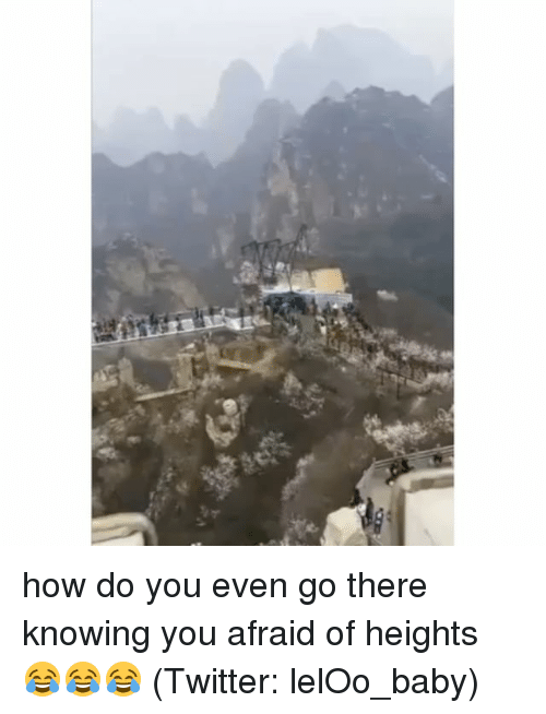 Funny, Memes, and Twitter: how do you even go there knowing you afraid of heights 😂😂😂 (Twitter: lelOo_baby)