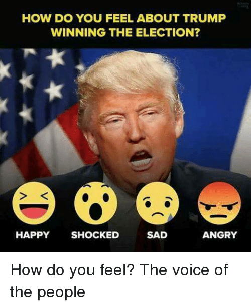 Memes, The Voice, and Voice: HOW DO YOU FEEL ABOUT TRUMP  WINNING THE ELECTION?  HAPPY  SHOCKED  SAD  ANGRY How do you feel?  The voice of the people