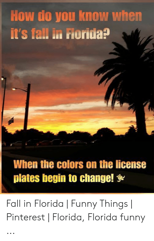 Fall In Florida: How do you know when  it's fall in Florida?  When the colors on the license  plates begin to change! Fall in Florida | Funny Things | Pinterest | Florida, Florida funny ...