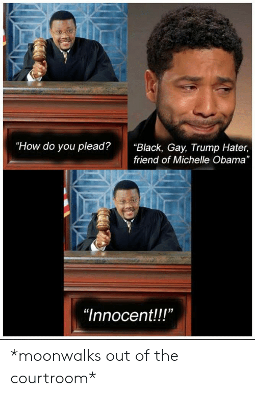 """Trump Hater: """"How do you plead?""""Black, Gay, Trump Hater,  friend of Michelle Obama  """"Innocent!!"""" *moonwalks out of the courtroom*"""
