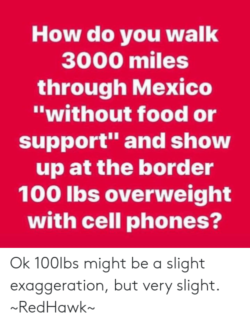 """cell phones: How do you walk  3000 miles  through Mexico  """"without food or  support"""" and show  up at the border  100 lbs overweight  with cell phones? Ok 100lbs might be a slight exaggeration, but very slight. ~RedHawk~"""