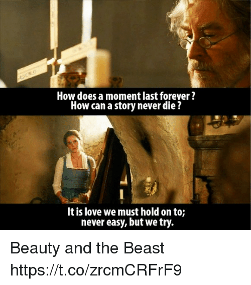 Love, Memes, and Beauty and the Beast: How does a moment last forever?  How can a story never die  It is love we must hold on to;  never easy, but we try. Beauty and the Beast https://t.co/zrcmCRFrF9