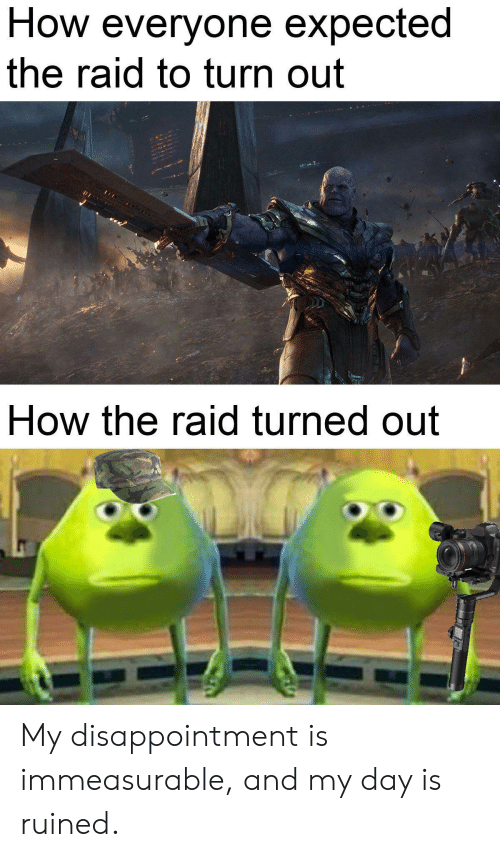 the raid: How everyone expected  the raid to turn out  How the raid turned out My disappointment is immeasurable, and my day is ruined.