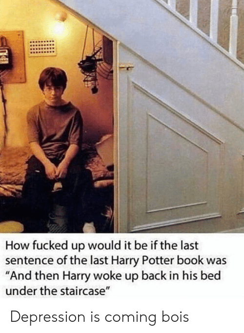 """harry potter book: How fucked up would it be if the last  sentence of the last Harry Potter book was  """"And then Harry woke up back in his bed  under the staircase"""" Depression is coming bois"""