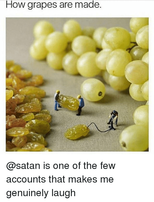 Memes, Satan, and 🤖: How grapes are made. @satan is one of the few accounts that makes me genuinely laugh