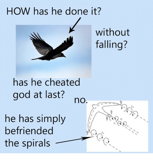 spirals: HOW has he done it?  without  falling?  has he cheated  god at last?  no  he has simply  befriended  the spirals