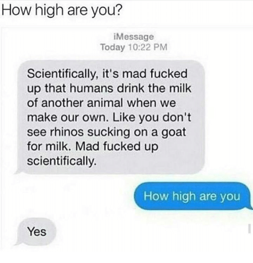 How High, Memes, and Goat: How high are you?  i Message  Today 10:22 PM  Scientifically, it's mad fucked  up that humans drink the milk  of another animal when we  make our own. Like you don't  see rhinos sucking on a goat  for milk. Mad fucked up  scientifically.  How high are you  Yes