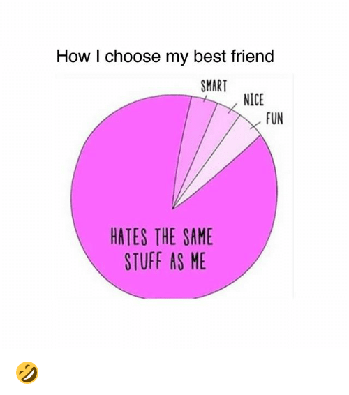 Best Friend, Memes, and Best: How I choose my best friend  SMART  NICE  FUN  HATES THE SAME  STUFF AS ME 🤣