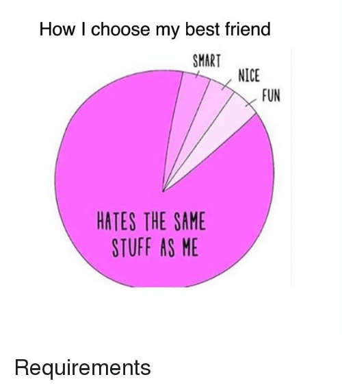Best Friend, Memes, and Best: How I choose my best friend  SMART  NICE  FUN  HATES THE SAME  STUFF AS ME Requirements