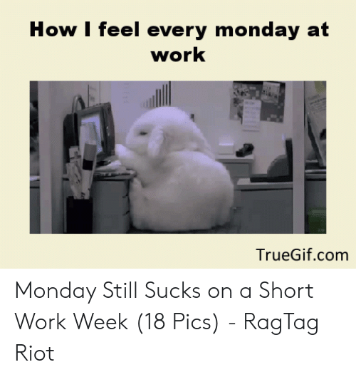 Short Work Week: How I feel every monday at  work  TrueGif.com Monday Still Sucks on a Short Work Week (18 Pics) - RagTag Riot