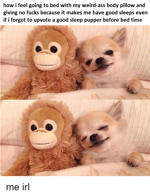 bed time: how i feel going to bed with my weird-ass body pillow and  giving no fucks because it makes me have good sleeps even  if i forgot to upvote a good sleep pupper before bed time me irl
