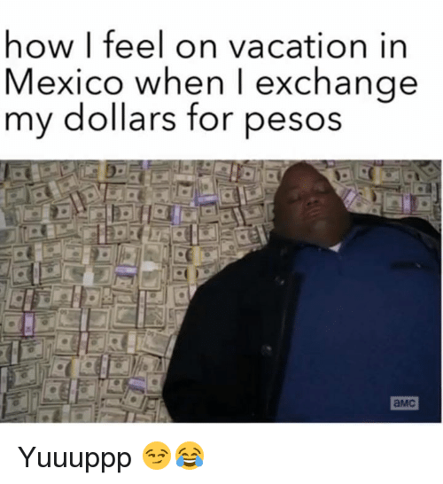 Memes, Mexico, and Vacation: how I feel on vacation in  Mexico when I exchange  my dollars for pesos  aMc Yuuuppp 😏😂