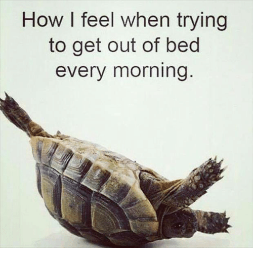 Relationships, How, and Get: How I feel when trying  to get out of bed  every morning