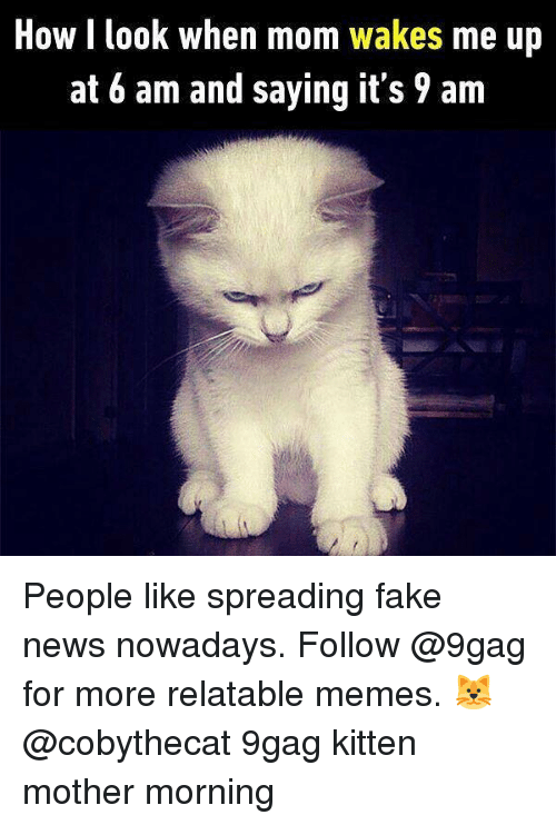 Faking News: How I look when m  om wakes me up  at 6 am and saying it's 9 am People like spreading fake news nowadays. Follow @9gag for more relatable memes. 🐱@cobythecat 9gag kitten mother morning