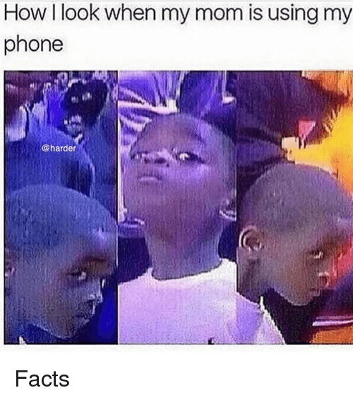 Facts, Memes, and Phone: How I look when my mom is using my  phone  @harder Facts