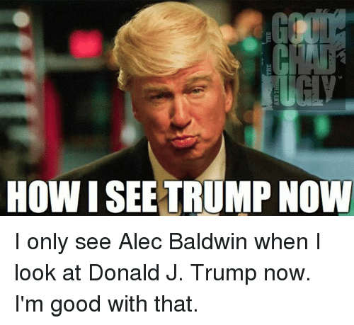 Memes, Alec Baldwin, and Good: HOW I SEE TRUMP NOW I only see Alec Baldwin when I look at Donald J. Trump now.  I'm good with that.