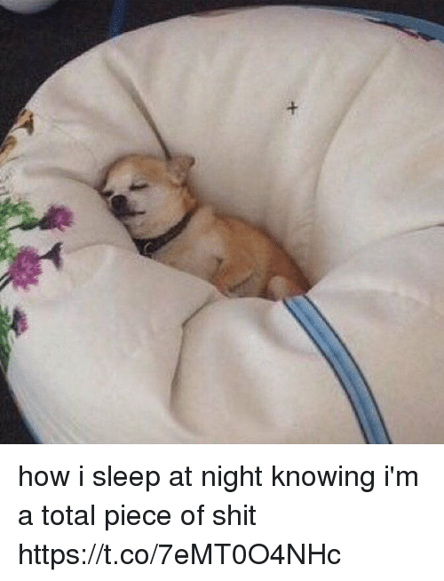 Totaled: how i sleep at night knowing i'm a total piece of shit https://t.co/7eMT0O4NHc