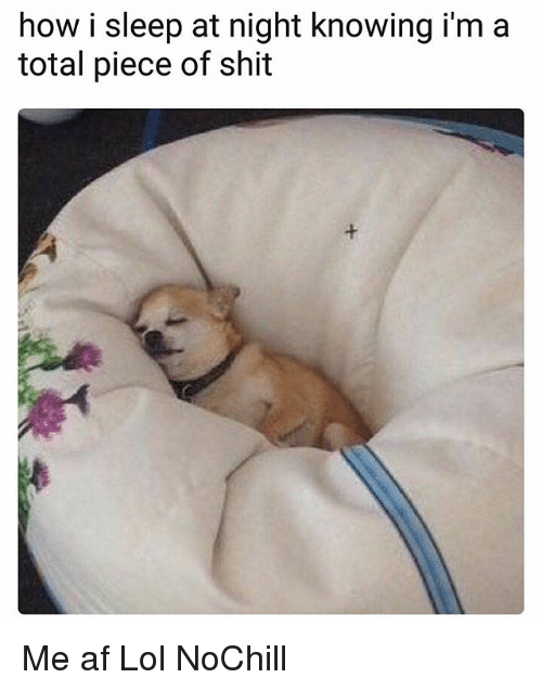 Af, Funny, and Lol: how i sleep at night knowing i'm a  total piece of shit Me af Lol NoChill