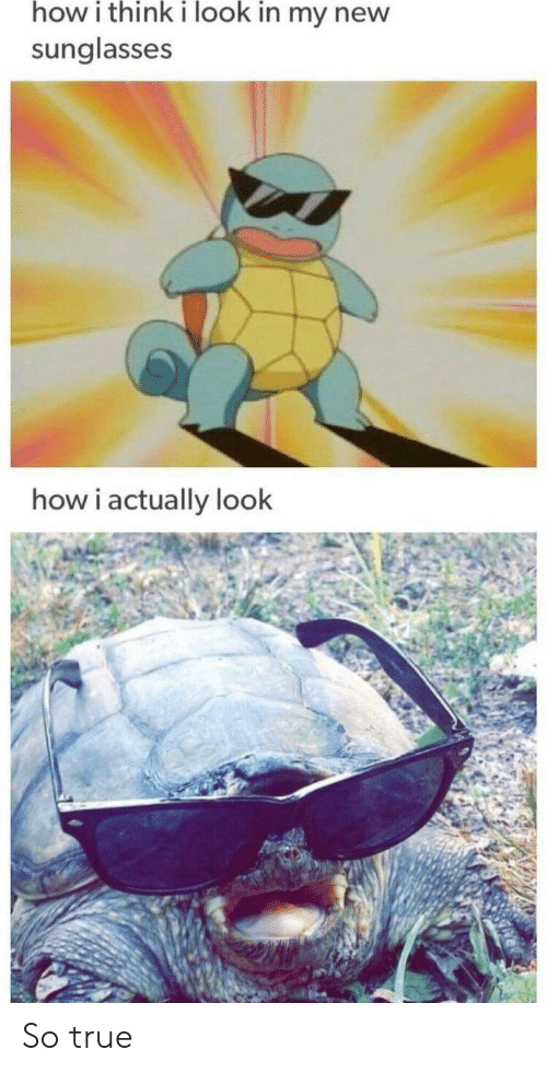 How I Think I Look: how i think i look in my new  sunglasses  how i actually look So true