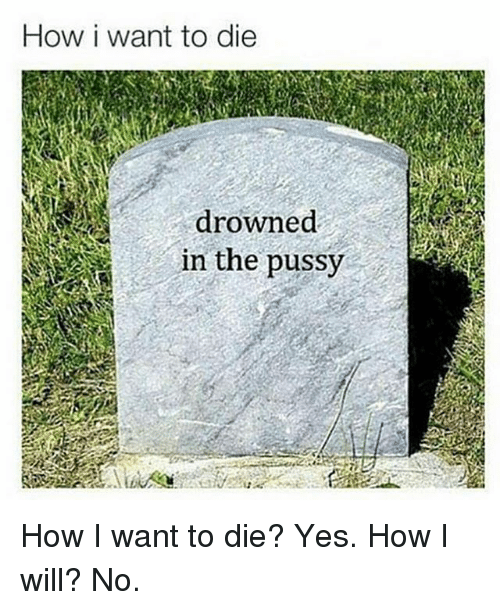 Memes, Pussy, and 🤖: How i want to die  drowned  in the pussy How I want to die? Yes. How I will? No.