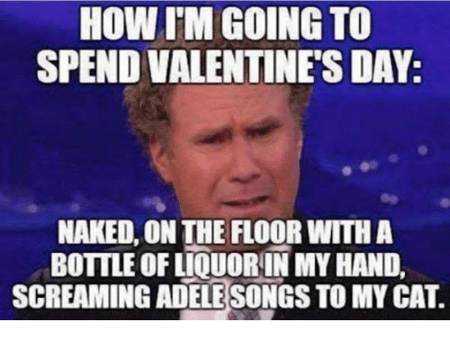Memes, Valentine's Day, and Naked: HOW IM GOING TO  SPEND VALENTINES DAY:  NAKED, ON THE FLOOR WITH A  BOTTLE OF LIQUOR IN MY HAND,  SCREAMING ADELESONGS TO MYCAT.