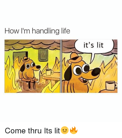 Funny, It's Lit, and Life: How I'm handling life  it's lit  OC Come thru Its lit😐🔥