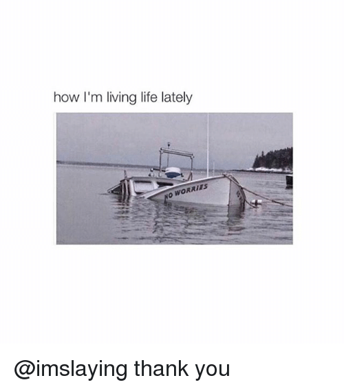Girl Memes: how I'm living life lately  WORRIES @imslaying thank you